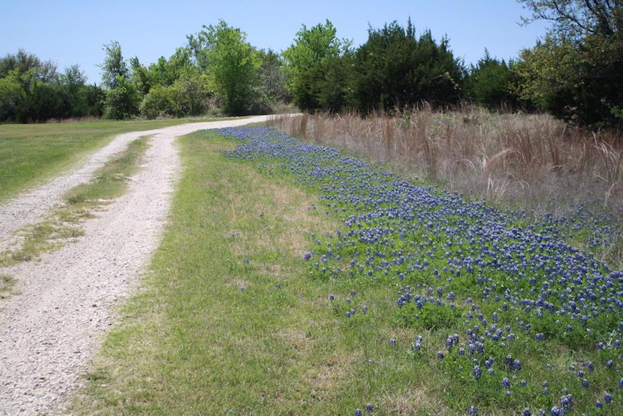Rough Creek's Nature Trails